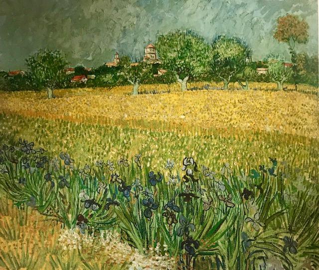 Campo florido cerca de Arlés. Óleo sobre lienzo Cuadro de gran contraste cromático entre el amarillo del campo y que tanto fascinó a Van Gogh y unos lirios de vivos colores en primer plano.