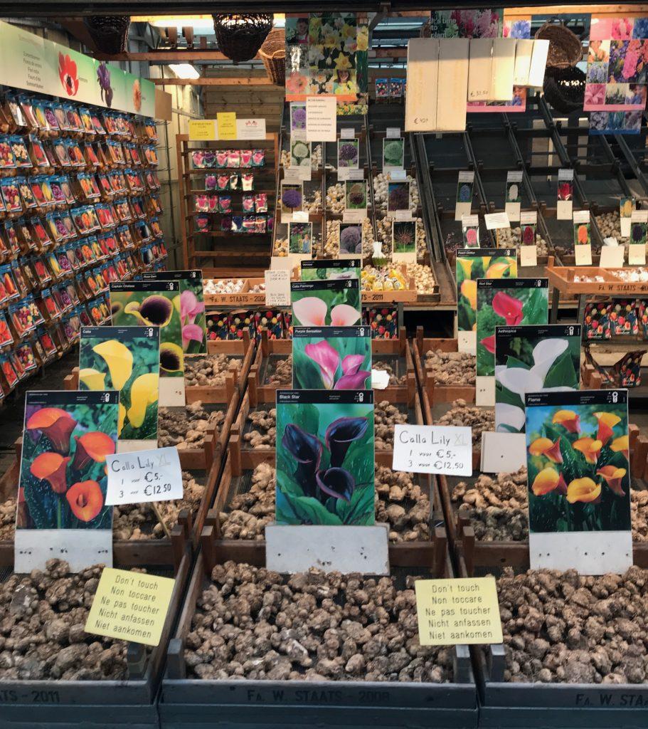 Mercado de las Flores Amsterdam Escapada de fin de semana a Amsterdam