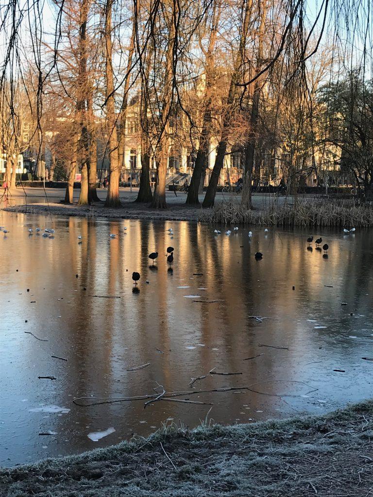 Vondelpark Amsterdam Escapada de fin de semana a Amsterdam