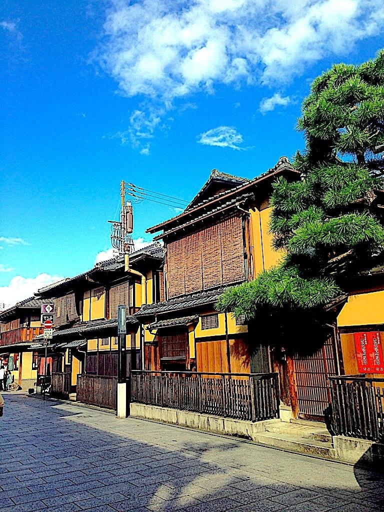 Hanami koji Kioto Japón un viaje inolvidable