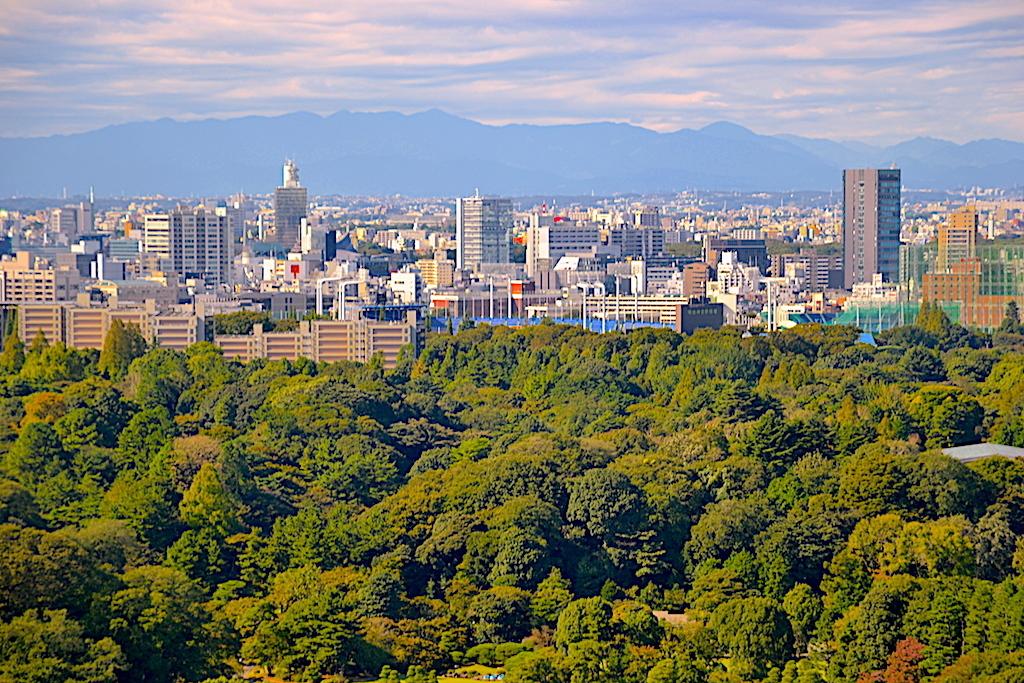 Ciudad de Tokio en Japón un viaje inolvidable